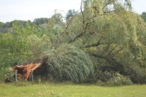 Furtuna și grindina au fost devastatoare