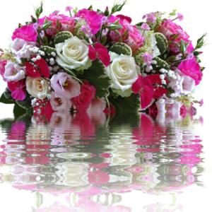 Mesaj de felicitare, cu ocazia Zilei de naștere, pentru Domnul Valentin CEBOTARI,  Președintele raionului Dondușeni (29 iulie)